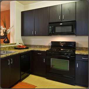 WalzCraft RTF kichen cabinet doors - Italian Wenge kitchen shown